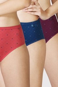 Van Heusen Woman Intimates Panty Hipster (Pack Of 3) - Dark Assorted